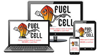 Fuel Cell Petrol
